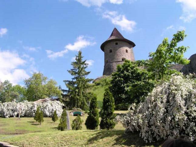 Bazaltorgona-Somoskőn-és-a-vár2